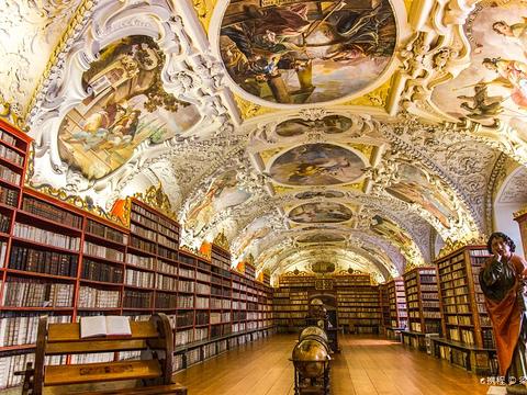斯特拉霍夫修道院神学图书馆的图片