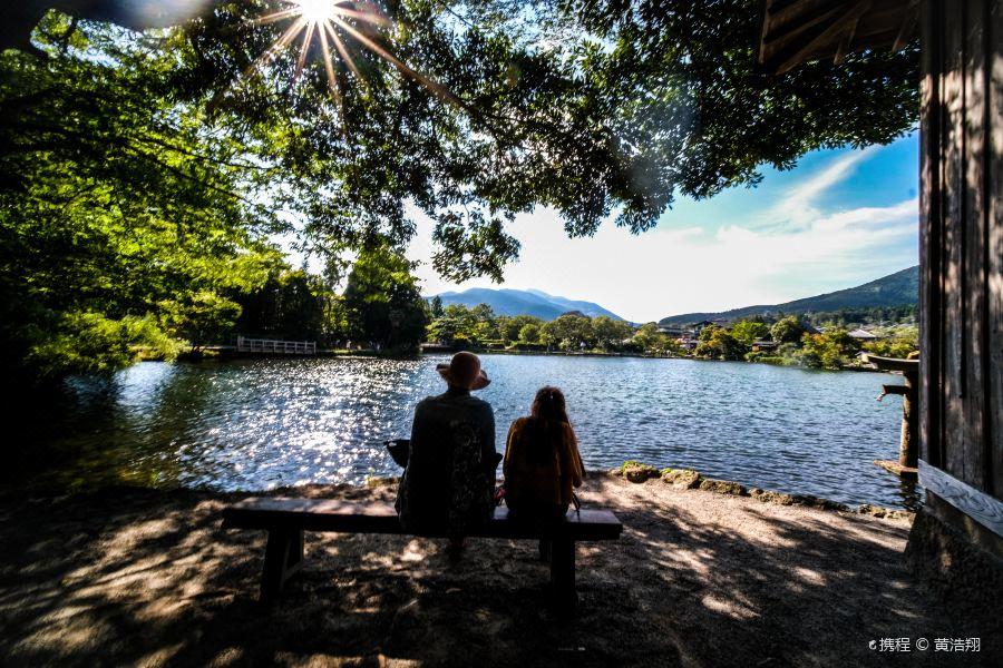 金鳞湖旅游景点图片