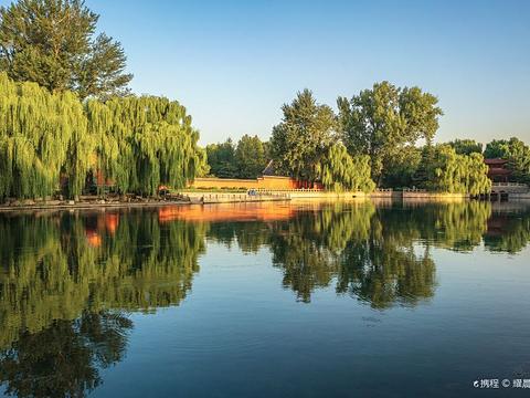 万泉湖的图片
