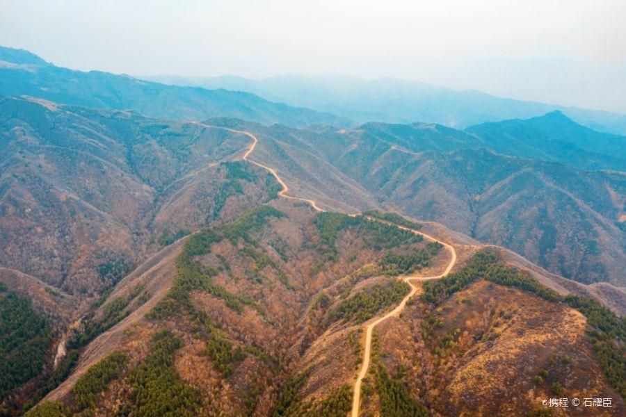 二龙什台国家森林公园旅游景点图片