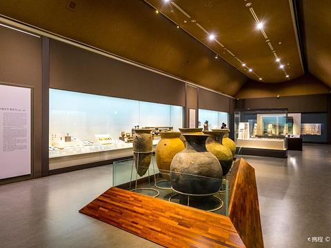 国立大邱博物馆的图片