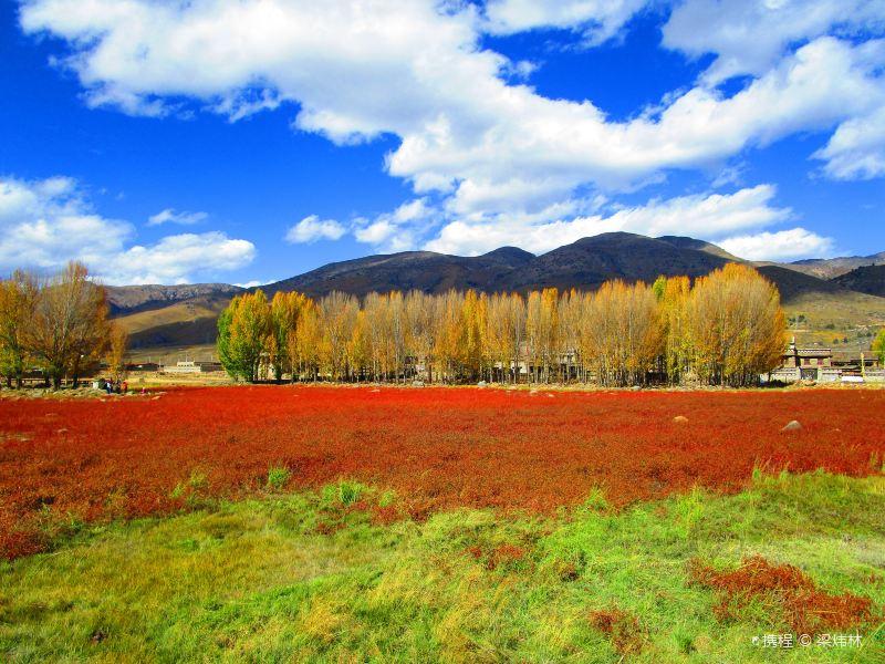 红草地旅游景点图片