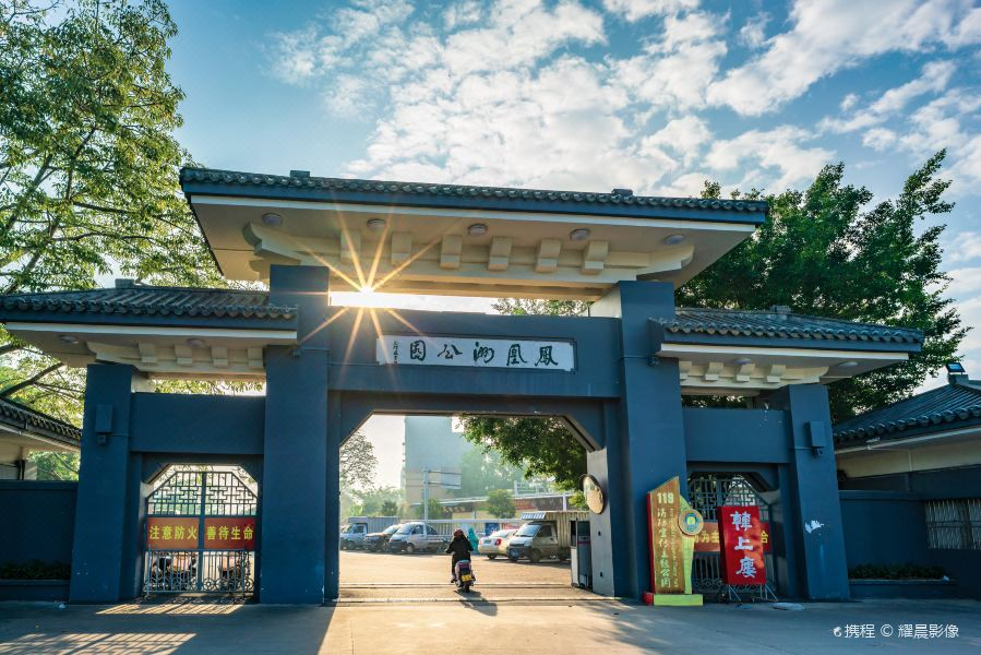 凤凰洲公园旅游景点图片