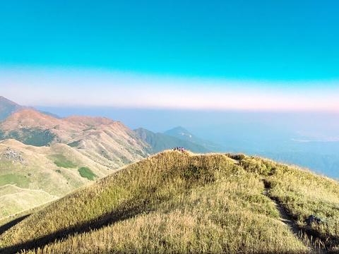 大南山的图片