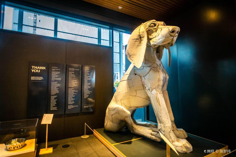 Tacoma Art Museum旅游景点图片