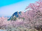 北京后花园(白虎涧)风景区