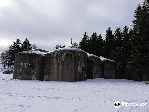 Fort Stachelberg旅游景点图片