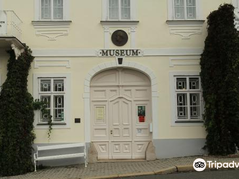Mestske Muzeum Marianske Lazne旅游景点图片