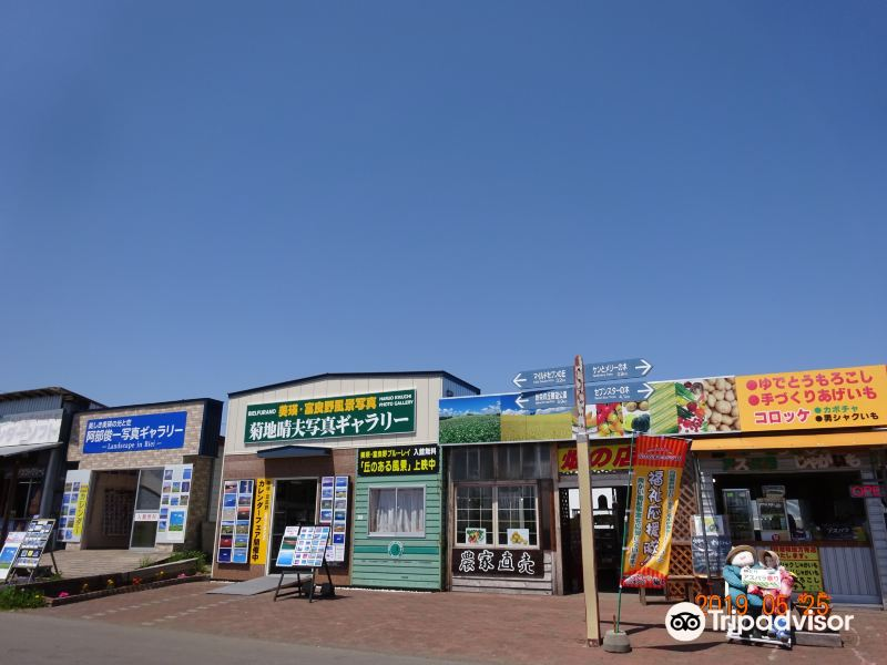 Kikuchi Haruo Photo Gallery旅游景点图片