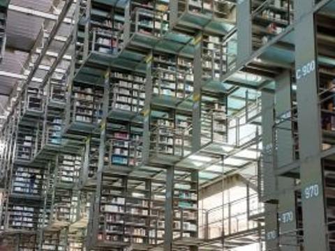 巴斯孔塞洛斯图书馆
