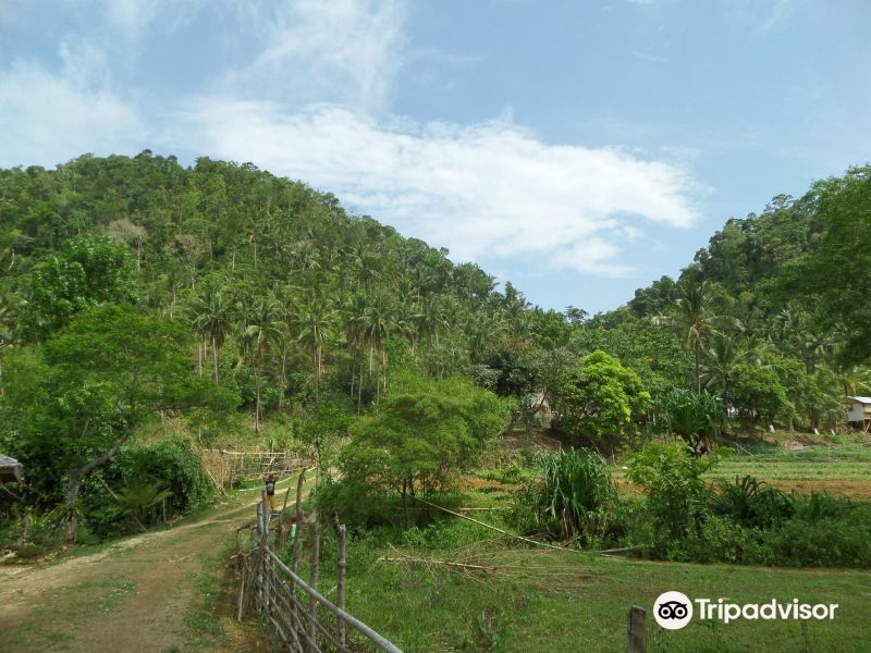 Hacienda Maria庄园旅游景点图片