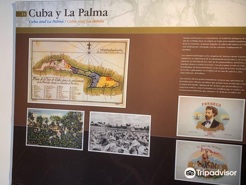 Museo del Puro Palmero旅游景点图片
