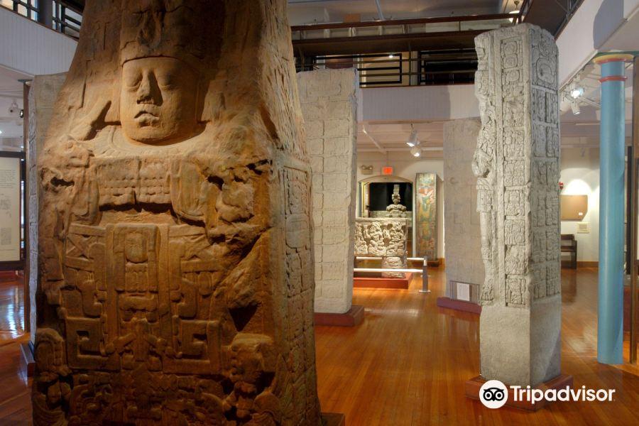 皮博迪考古学与人类学博物馆旅游景点图片