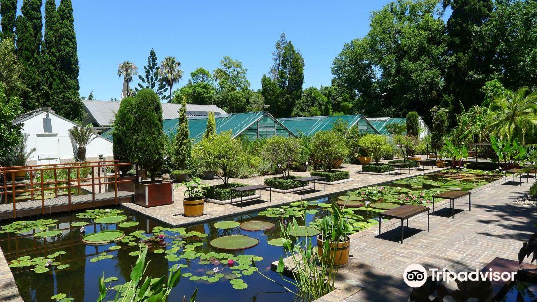 Botanical Garden University of Stellenbosch旅游景点图片