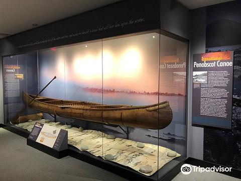 皮博迪考古学与人类学博物馆的图片