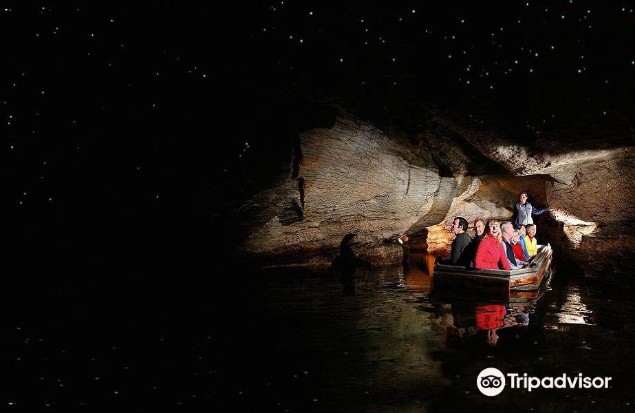Te Anau Glowworm Caves旅游景点图片