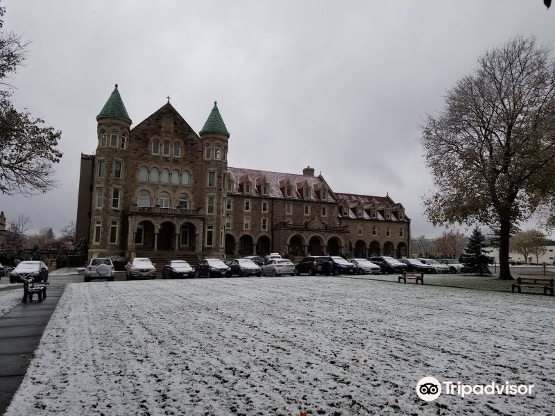 Mount Carmel Museum & Art Centre旅游景点图片