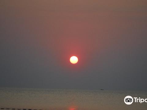 BaiDaOngDia海滩旅游景点图片