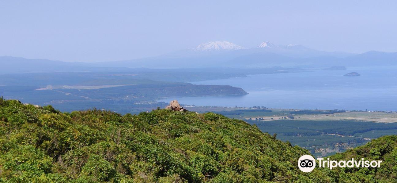 Tauhara山旅游景点图片