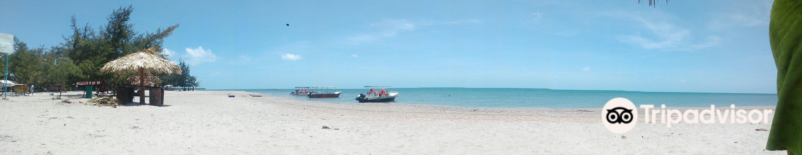 Casuarina Beach旅游景点图片
