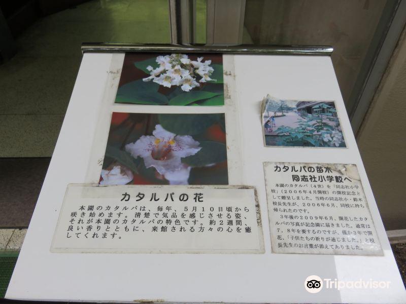 Tokutomi Memorial Garden旅游景点图片