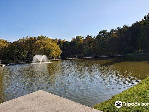 Nagyerdei Park旅游景点图片