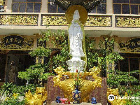 Thoi Long Co Tu Pagoda旅游景点图片
