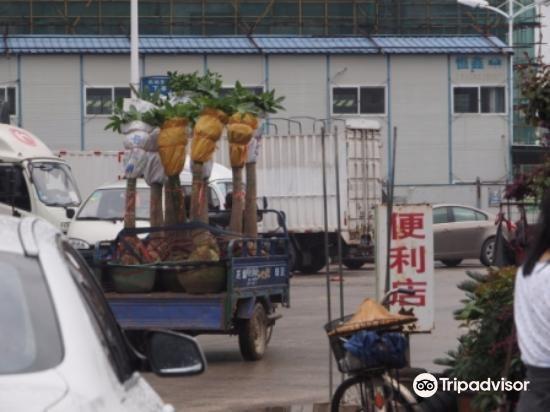 百花村旅游景点图片