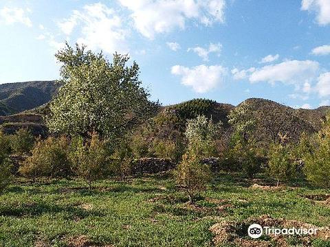 白羊沟风景区的图片