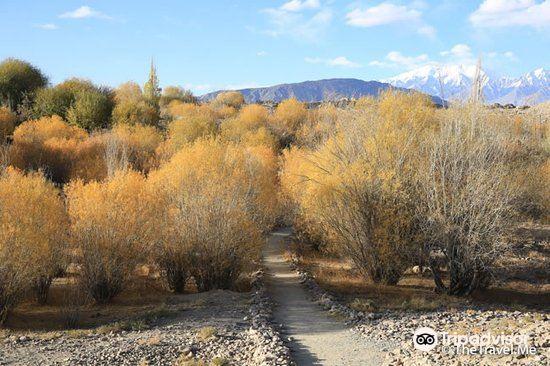 塔什库尔干堡垒旅游景点图片