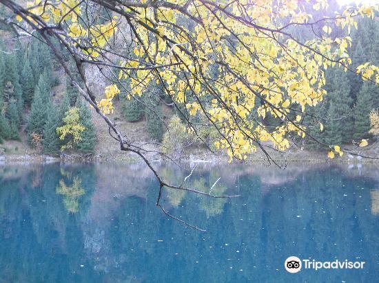 天池森林公园旅游景点图片