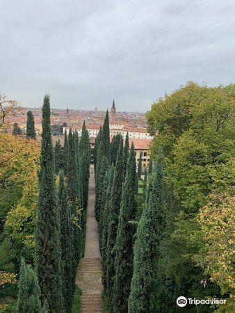朱斯蒂花园旅游景点图片