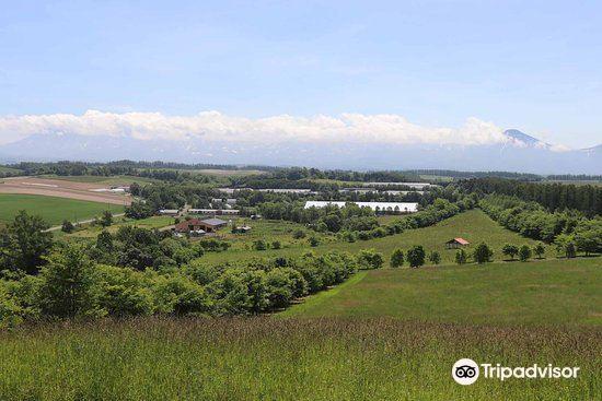 千代田牧场旅游景点图片