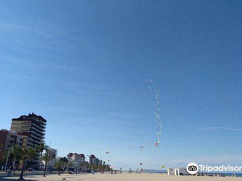 Playa Gandia旅游景点图片