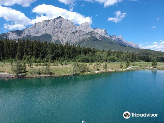 Quarry lake Park旅游景点图片
