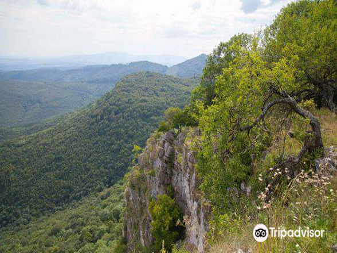 Bükk National Park旅游景点图片