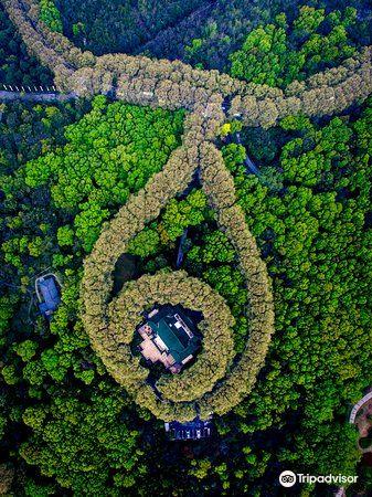 美龄宫旅游景点图片