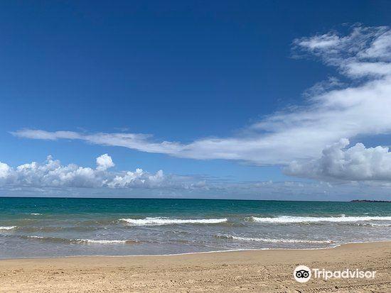 Carolina Beach旅游景点图片