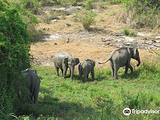 Maduru Oya National Park