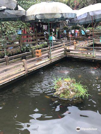 蛙潭旅游景点图片