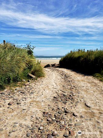 Fermoyle Beach旅游景点图片