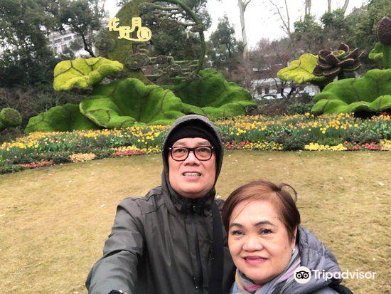 三湾植物园旅游景点图片