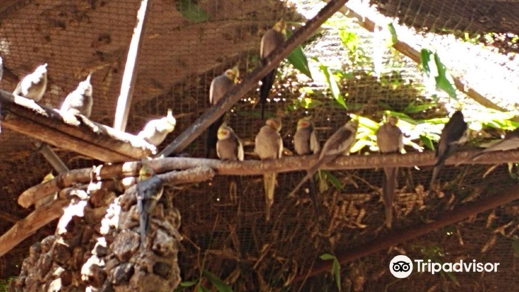 Nido de Quetzalcoatl旅游景点图片