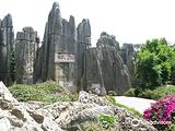 云南石林地质公园