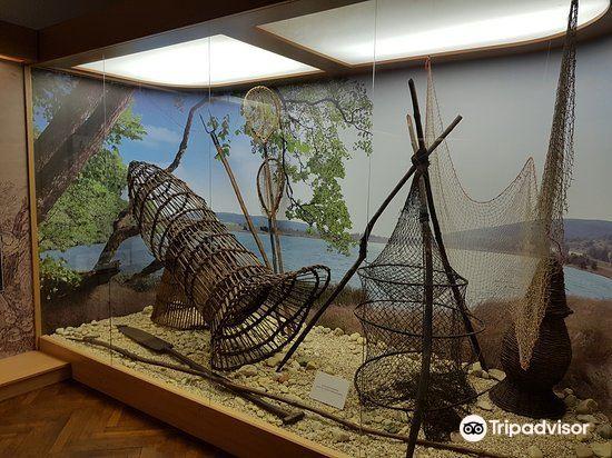 Herman Otto Museum旅游景点图片