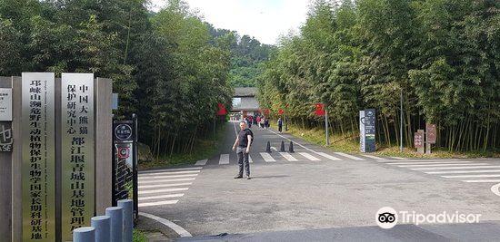 翠映湖旅游景点图片