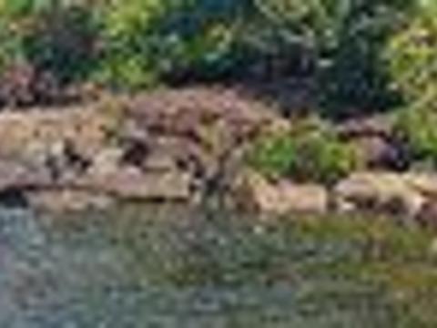 Tatai Waterfall旅游景点图片