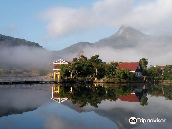 鹦哥岭旅游景点图片