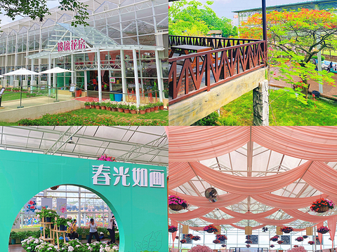 高明盈香生态园旅游景点图片